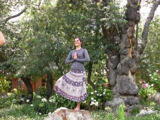 tree pose next to the ancient tree